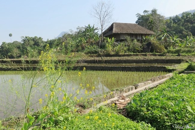 Bản làng Tiến Thắng. Photo: TongMai