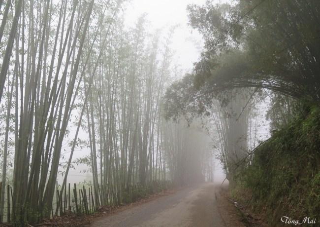 Sương mù. Photo: TốngMai