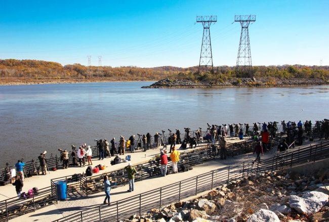 mai-2016-cowingo-dam2