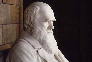 Charles Darwin statue, Natural History Museum, London - NHM photo