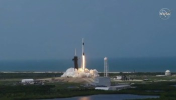 SpaceX makes history, launches NASA astronauts into space from US soil for the first time since 2011