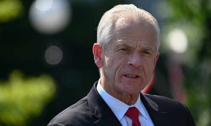 White House Adviser Navarro: 379,000 'Possibly Illegal Ballots' Cast in Michigan