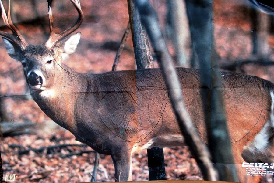 image regarding Deer Vitals Target Printable named Deer Paper Goals