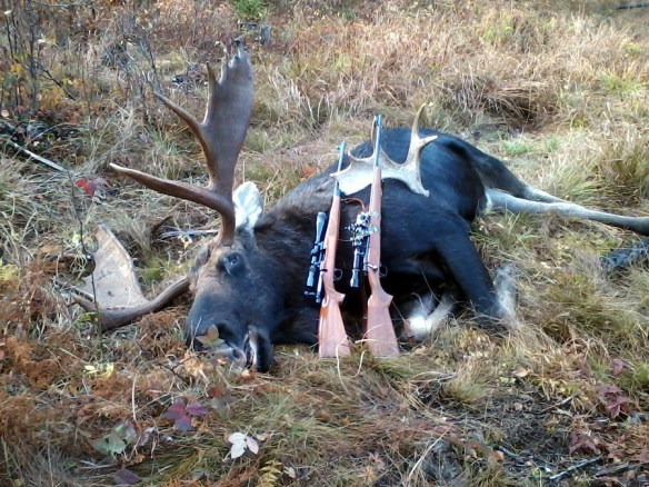 Moose from front with 2 rifles& shed1 small image