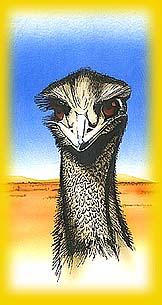 Old Man Emu Logo