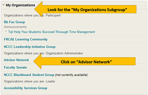 Instructions for Accessing Blackboard Group