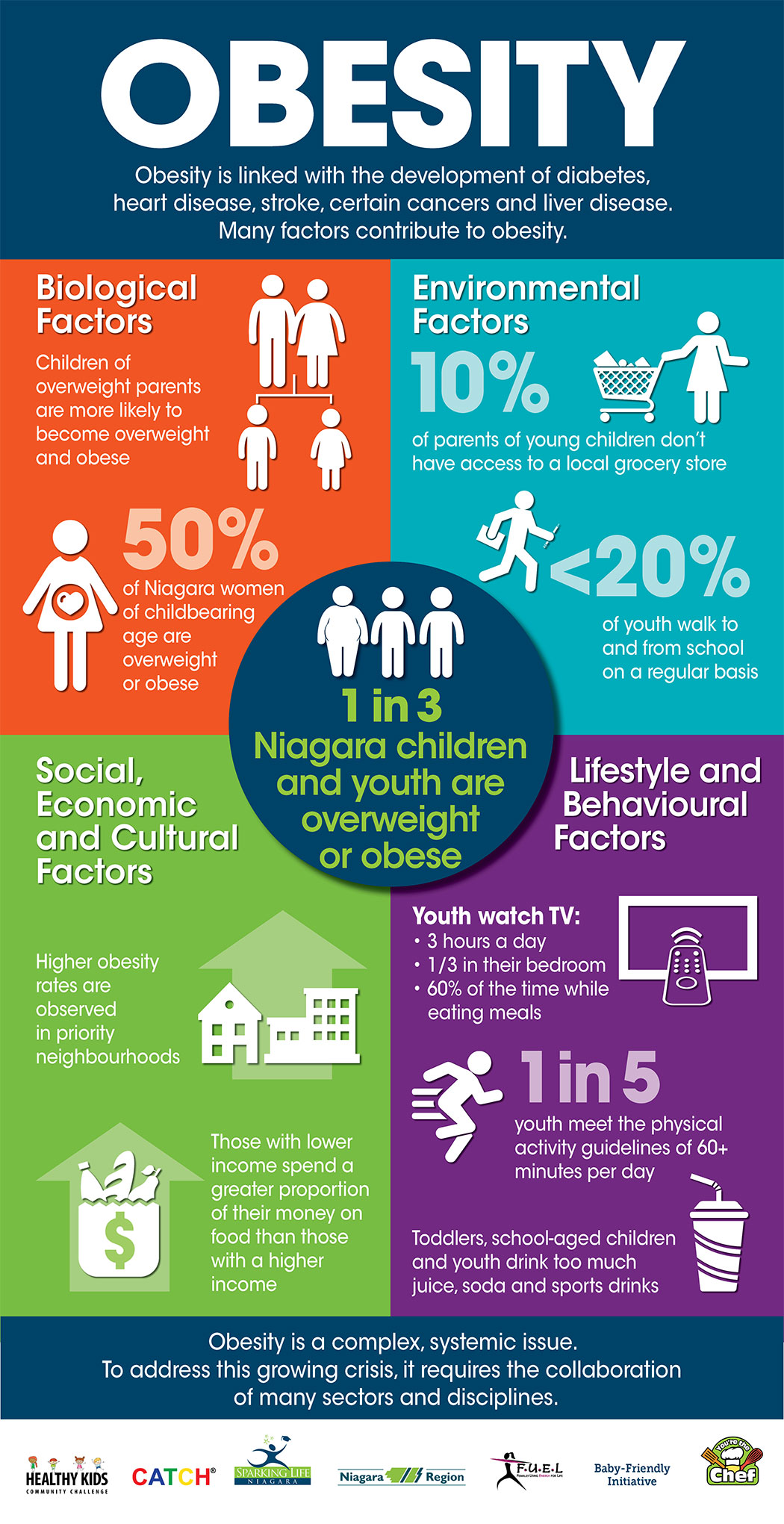 Podcast Supporting Children And Youth To Be More Active And Healthy The Brock News