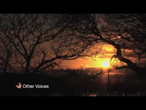 , Video from Other Voices: Richard Hawley, Jarvis Cocker & Lisa Hannigan – 'Silent Night'