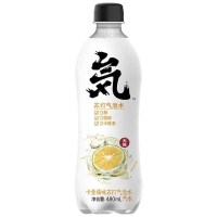EF Sodawasser Orange Lemonade 480ml