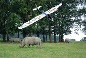 african-rhino google drone1