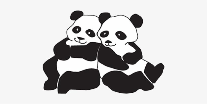 Pandas Panda Coloring Pages Transparent Png 500x500 Free Download On Nicepng