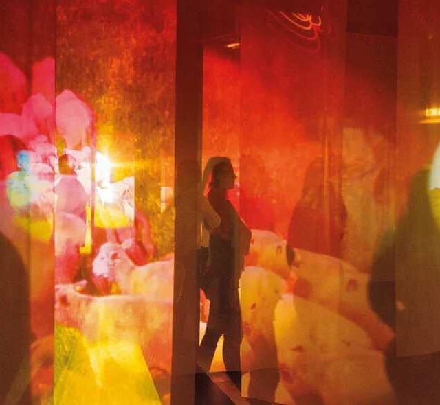 Exhibition Pipilotti Rist Sip My Ocean at The Museum ofhellip