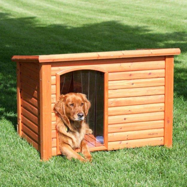 Accordez une importance particulière à la taille de votre niche a chien!