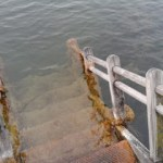 Stufen in die Donau