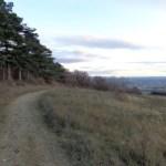 Wandern am Eichkogel
