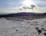 Ausblick auf den Kahlenberg
