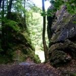 Felsen bei Fürstenbrunn