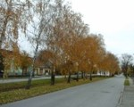 Dorfstraße Seyring