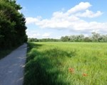 Wanderweg zur Esslinger Furt
