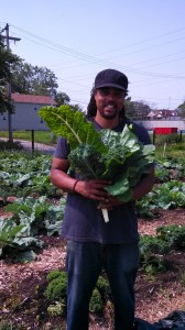 Dr Emmanuel Pratt, Harvesting silverbeet at the Perry St Farm, Englewood, Southside Chicago