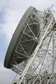 lovell-dish-side