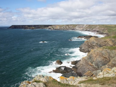 View from Old Lizard Head