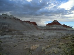 The Painted Desert and Petrified Forest.  Fine grained rock layers contain abundant iron and manganese compounds which provide the pigments for the various colours of the region.