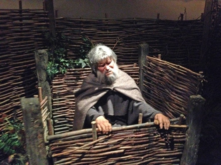 Jorvik viking toilet