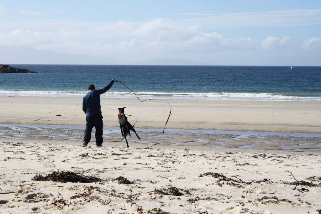 McDog executes a perfect Highland fling at Camusdarach beach at Morar