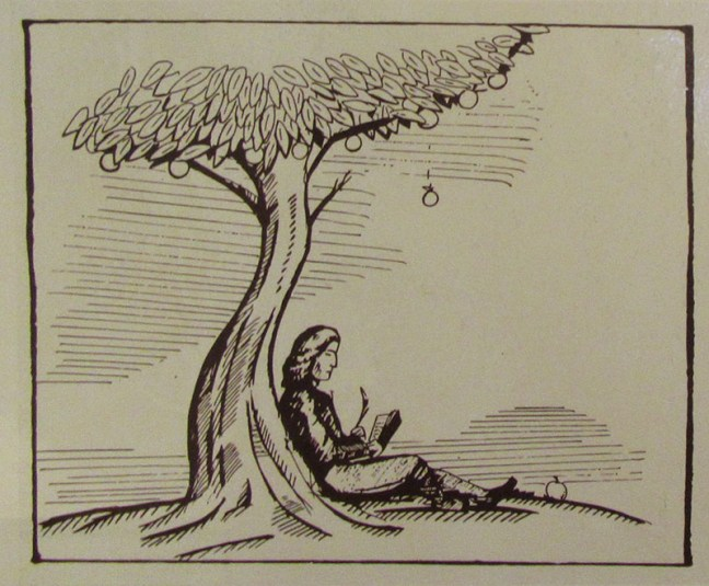 Newton's apple tree