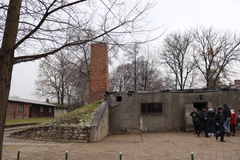 The Auschwitz gas chamber