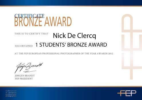 FEP Bronze Single Image Award