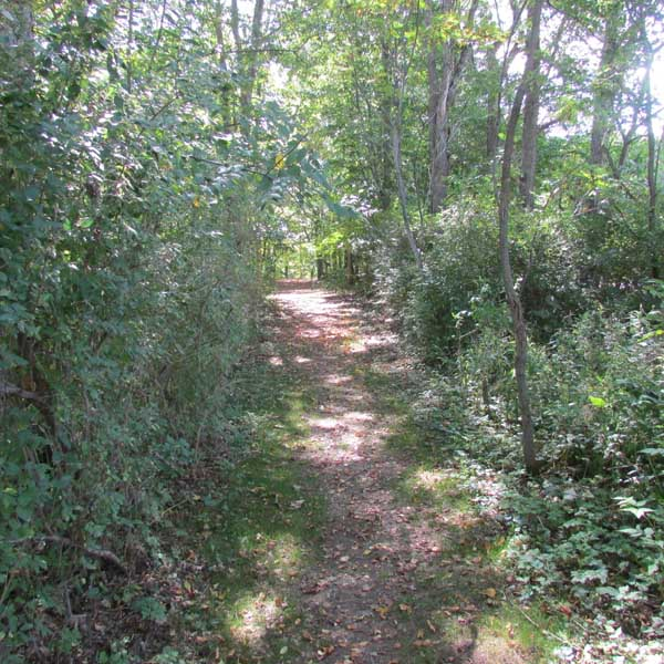 campground with hiking trails