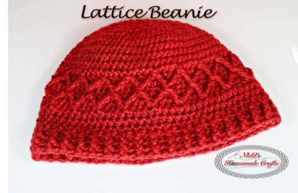 Lattice Beanie - Free Crochet Pattern by Nicki's Homemade Crafts #crochet #beanie #lattice