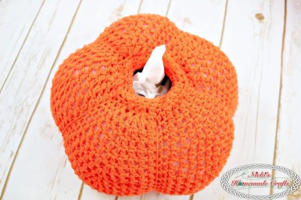 Secret Pumpkin Tissue Box Cover