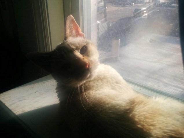 sun-bathing baby