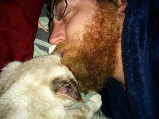 some nights we fall asleep like this