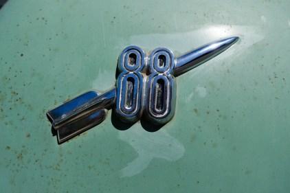 DSC08837