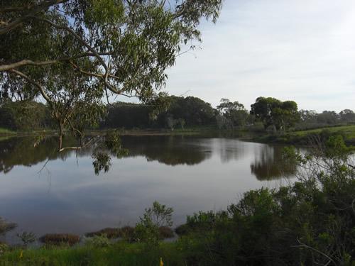 lagoon10a.JPG
