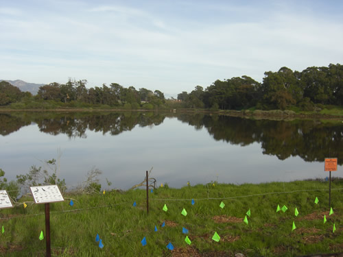 lagoon10b.JPG