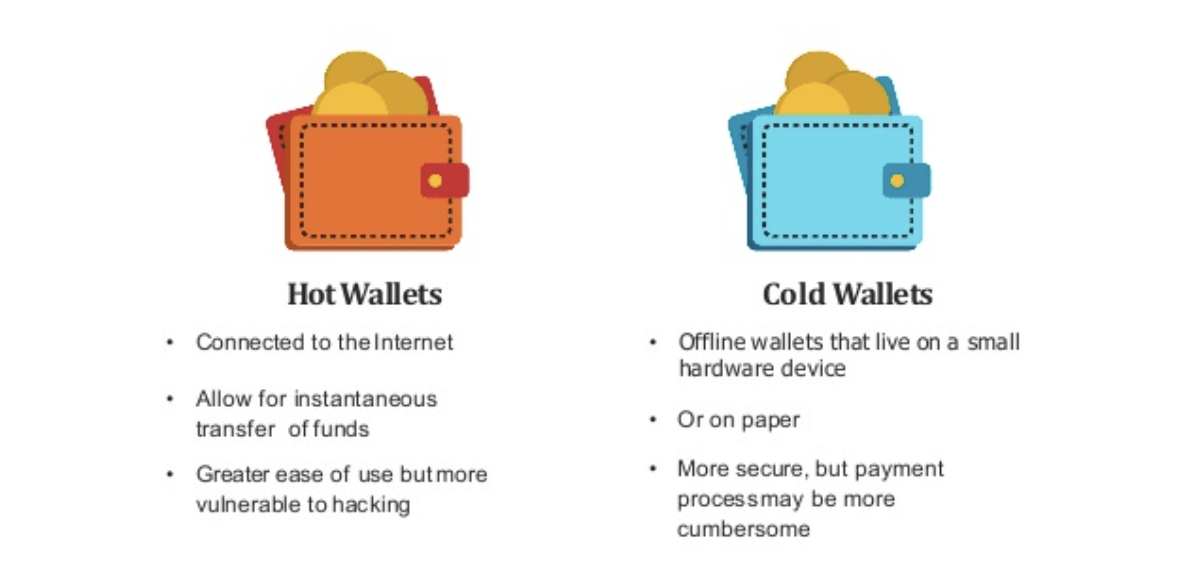 hot vs cold wallet