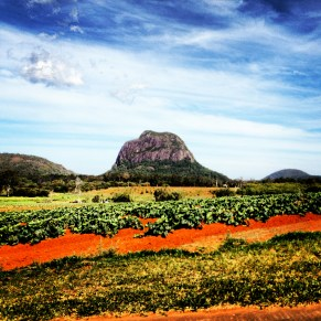 The Glass House Mountains taken while driving through.