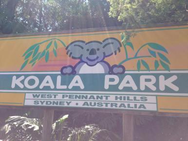 Koala Park, West Pennant Hills, Sydney
