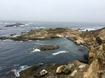 Walking at Point Lobos