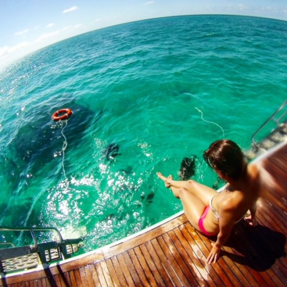 Image of me sitting on the back of a boat admiring the Great Barrier Reef