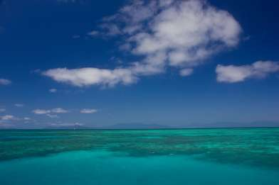 A shot of the Great Barrier Reef
