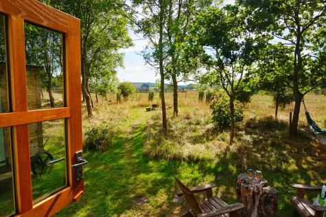 The view of woodland and fields from the shepherd's hut at Warmwell House in Dorset.