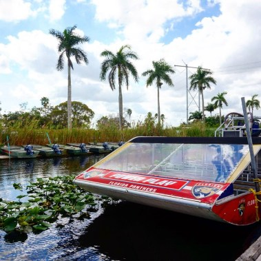 Airboat, Fort Lauderdale.