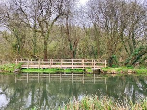 Views of the River Itchen