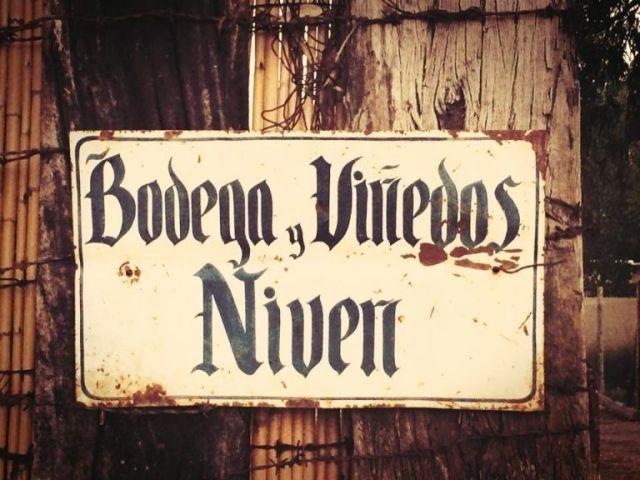 Bodega Niven